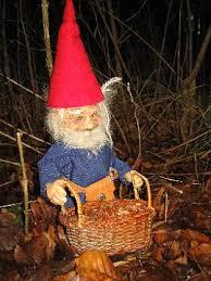Mon børnene finder nisserne i skoven?