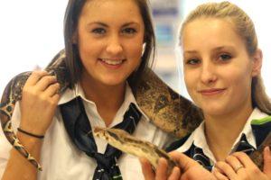 Føtex-piger er selvfølgelig ikke bange for slanger.