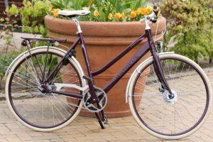 Cykler til hyggeture, by- og indkøbsture er der masser af i Fri BikeShop.