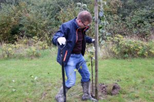 Benny Engelbrecht fik plantet sit træ i efterårsferien.