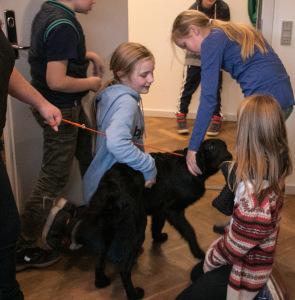 Her leger Picazzo med børn i dyrlægepraksis VetNatura.