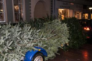 Spejderne henter de brugte juletræer i Rinkenæs.