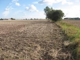 Kommunen skal på jord-opkøb.
