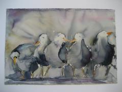 Helen Dalvigs billede: Måger