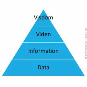 Det kræver visdom at bruge viden på den rigtige måde.