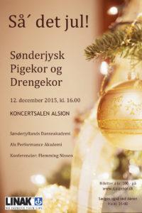 Klik på billedet og køb billet til næste koncert med Sønderjysk Pigejor.