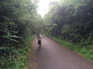 Her hænger grene ud over cykelstien og er til gene for både gående og cyklende.
